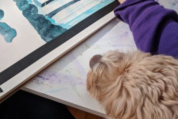 Cute cockapoo watches me paint.